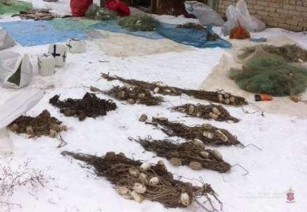 ВВолжском задержали банду браконьеров-рецидивистов