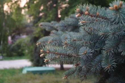 ВВолгограде первые дни августа будут жаркими