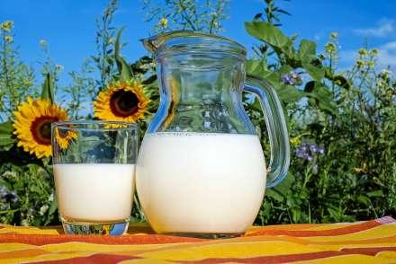 В Котельниковском районе будут развивать молочное животноводство